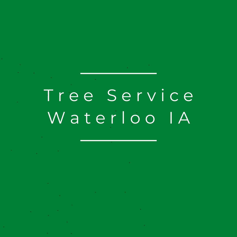 Tree Service Waterloo IA